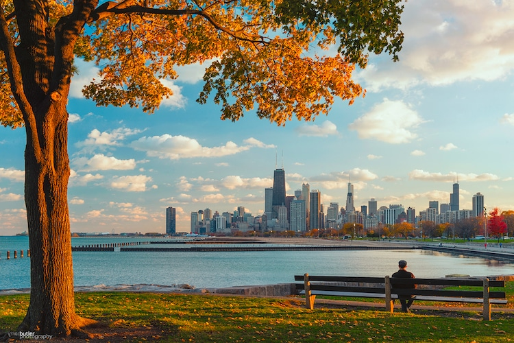 Chicago Skyline from Fullerton Avenue by Barry Butler