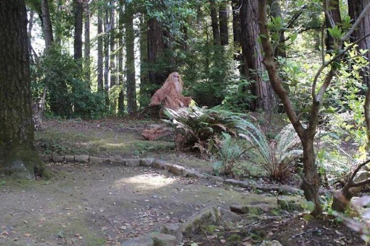 Bigfoot Selling His Felton, California House