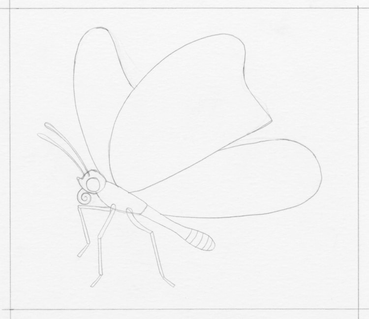 Learn How To Draw A Monarch Butterfly In Five Easy Steps