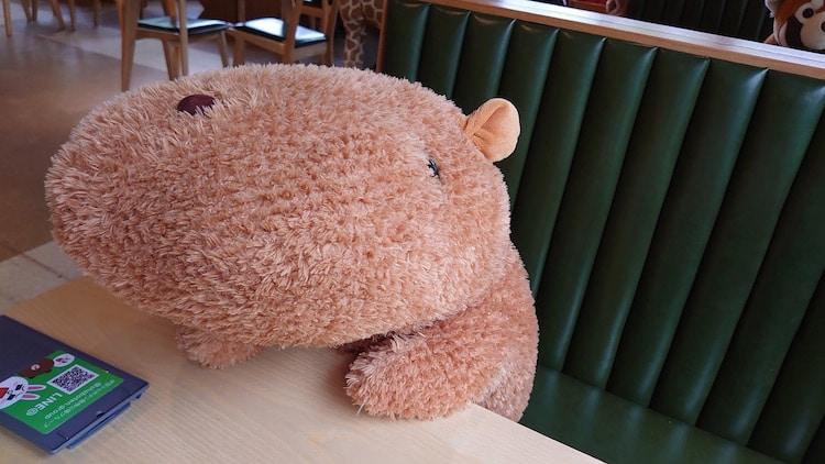 Carpincho de peluche en el Zoológico Izu Shabonten