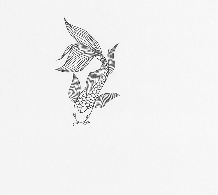 How to Draw Koi Fish Illustration