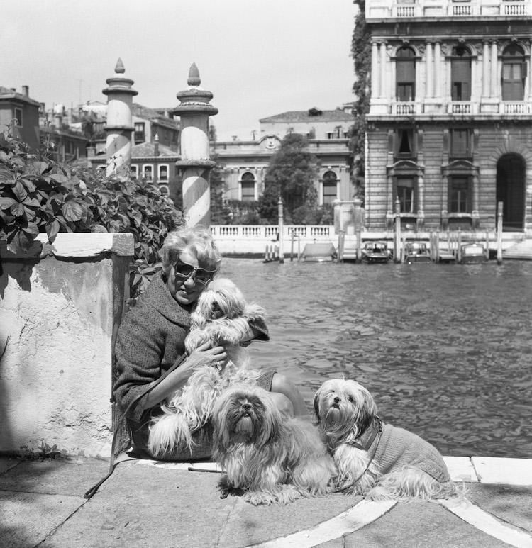 Peggy Guggenheim's Dogs