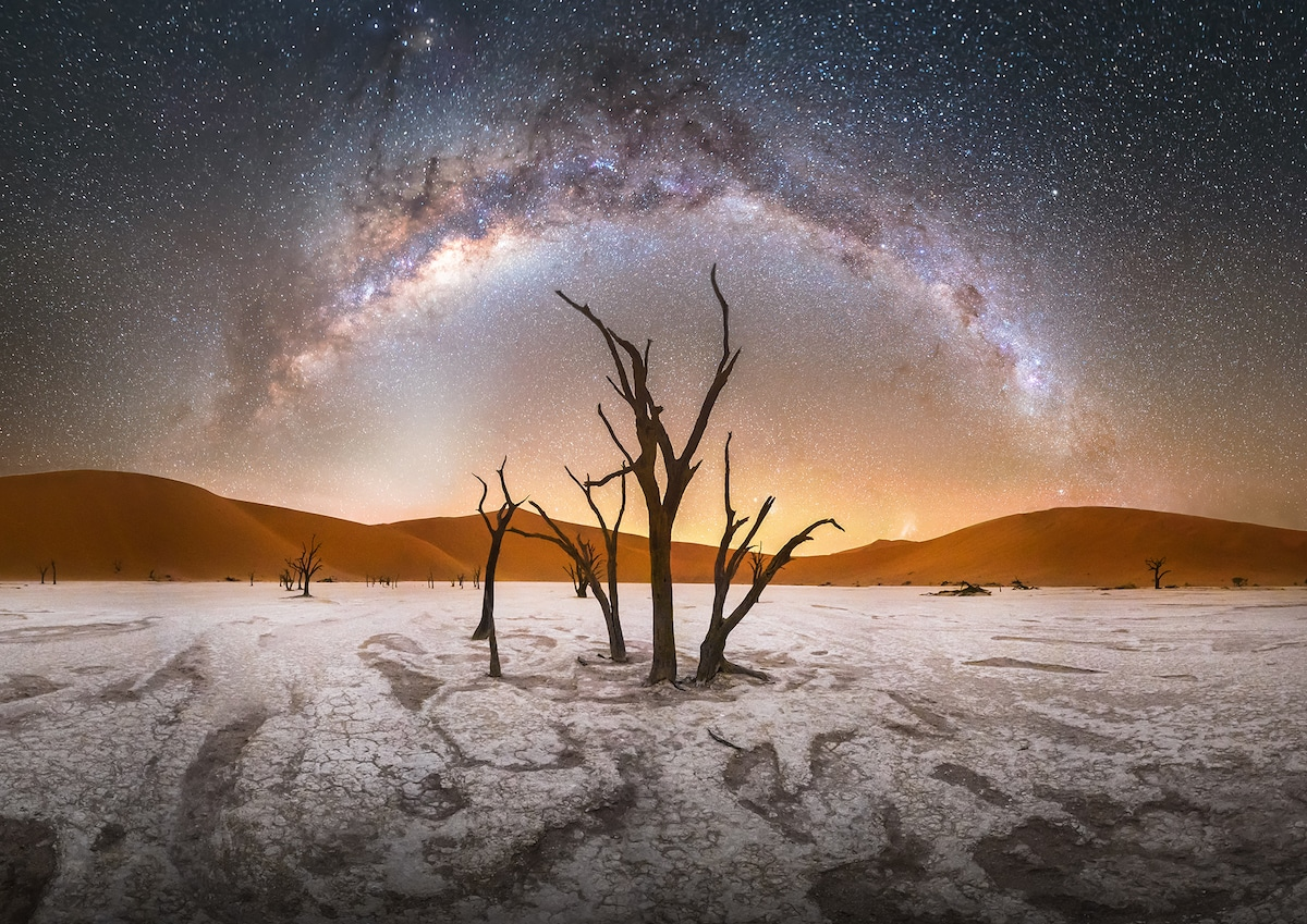 Milky Way Over Trees at the Namib-Naukluft National Park, Namibia