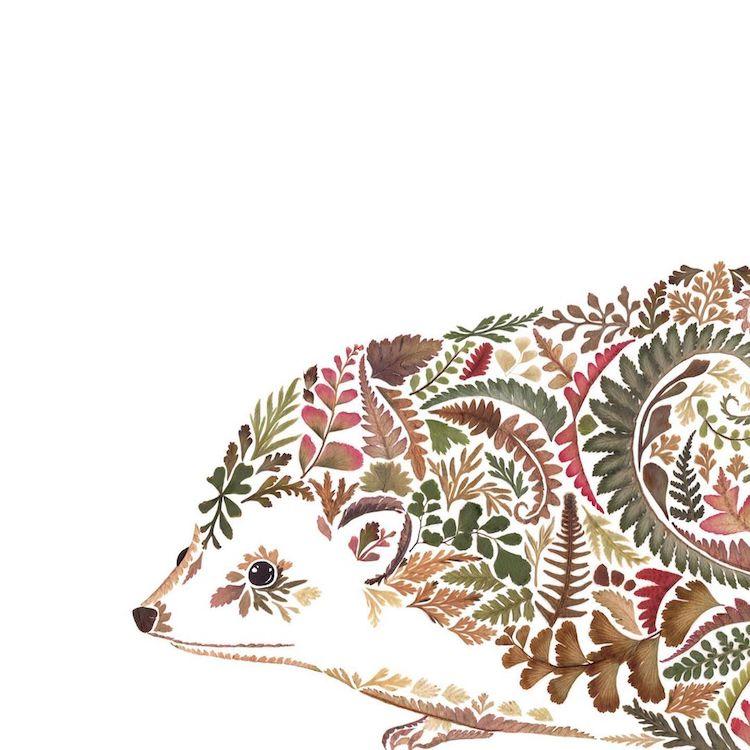 Botanical Illustrations by Helen Ahpornsiri