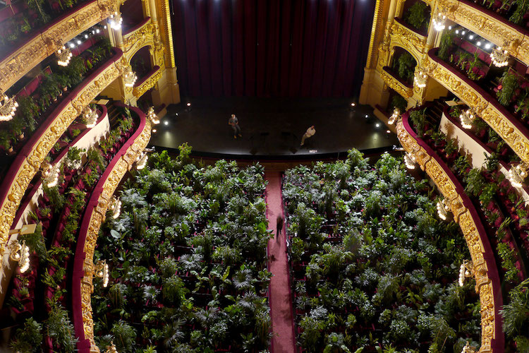 Aerial View of Plant Audience at the Barcelona Opera