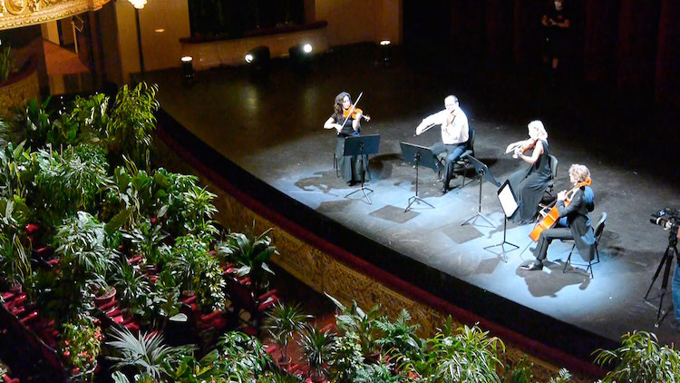 Musicians Playing Concert for Plants at the Gran Teatre Liceu Barcelona