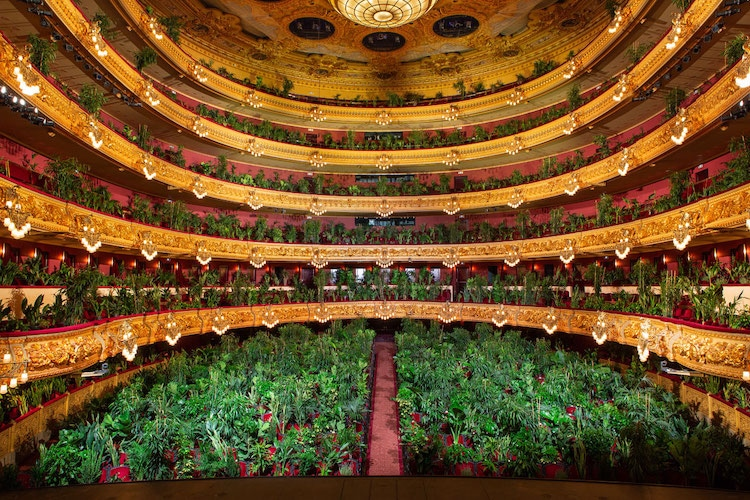 Concert for Plants at the Gran Teatre del Liceu in Barcelona