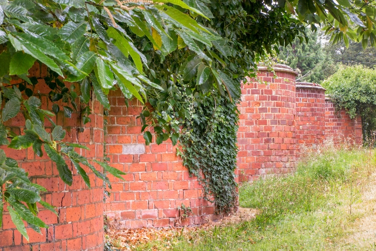 paredes onduladas