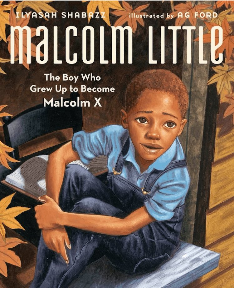 Malcolm Little: The Boy Who Grew Up to Become Malcom X written by Ilyasah Shabazz and illustrated by AG Ford
