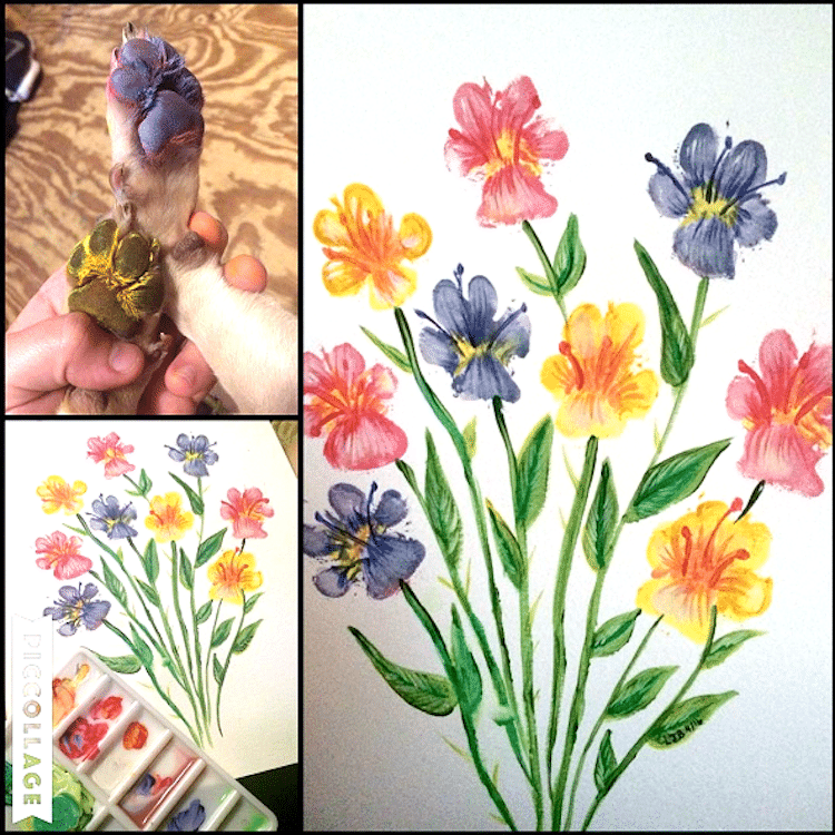 Dog Paw Print Flower Paintings