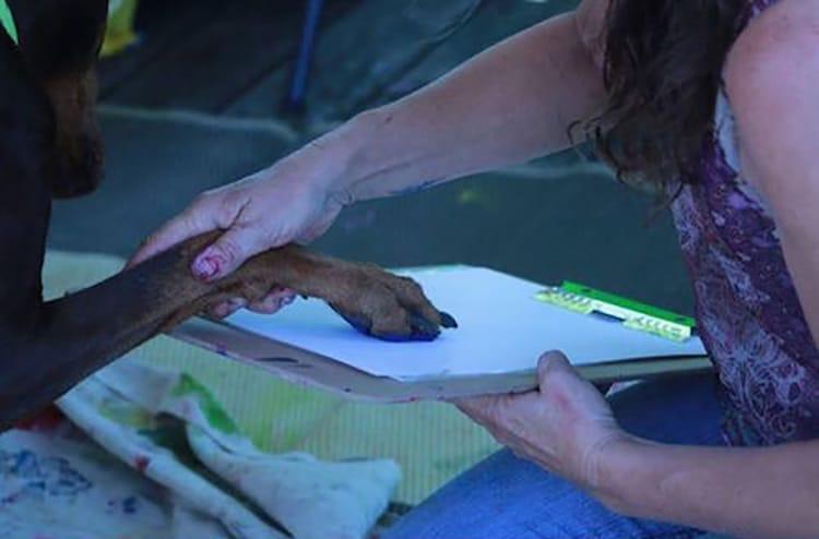 pinturas de huellas de perro