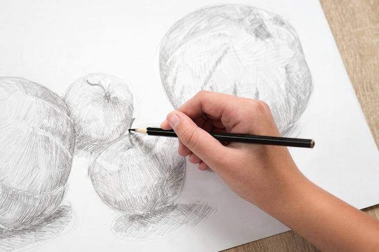 Drawing a Still Life