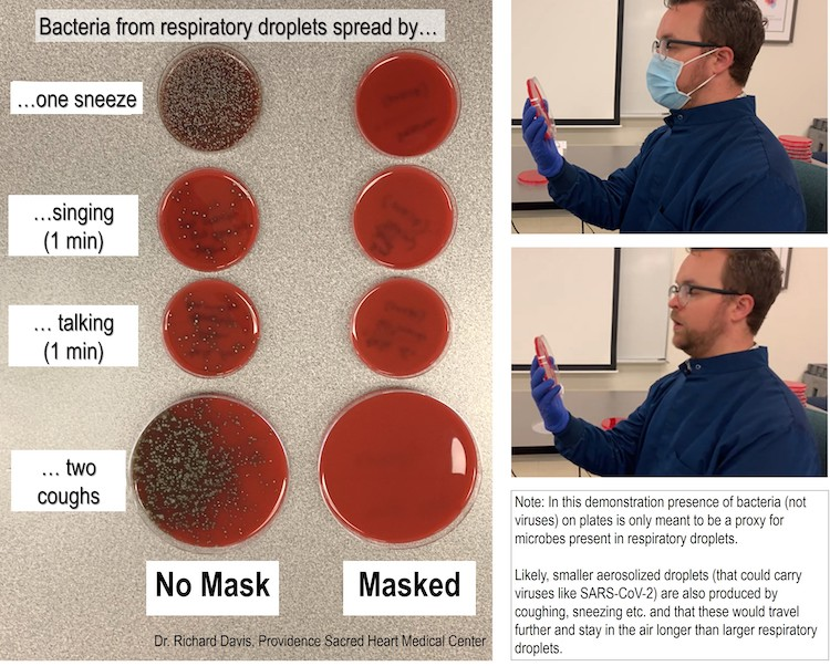 Face Mask Bacteria Demonstration