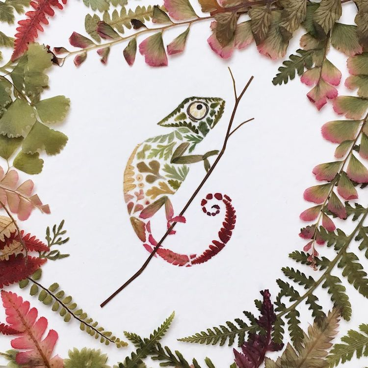Botanical Animal Illustrations Feature Real Pressed Leaves And Flowers
