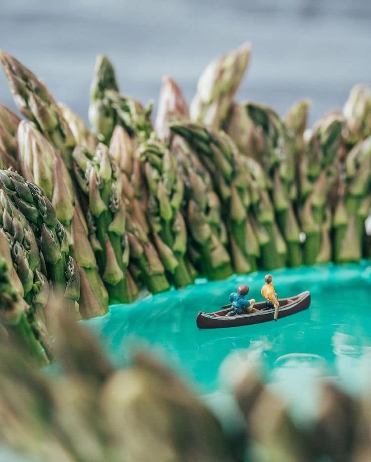 Indoor Miniature Nature Photography by Erin Sullivan
