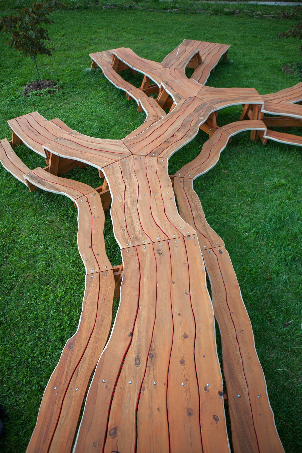 Mesa de picnic en forma de árbol diseñada por Michael Beitz