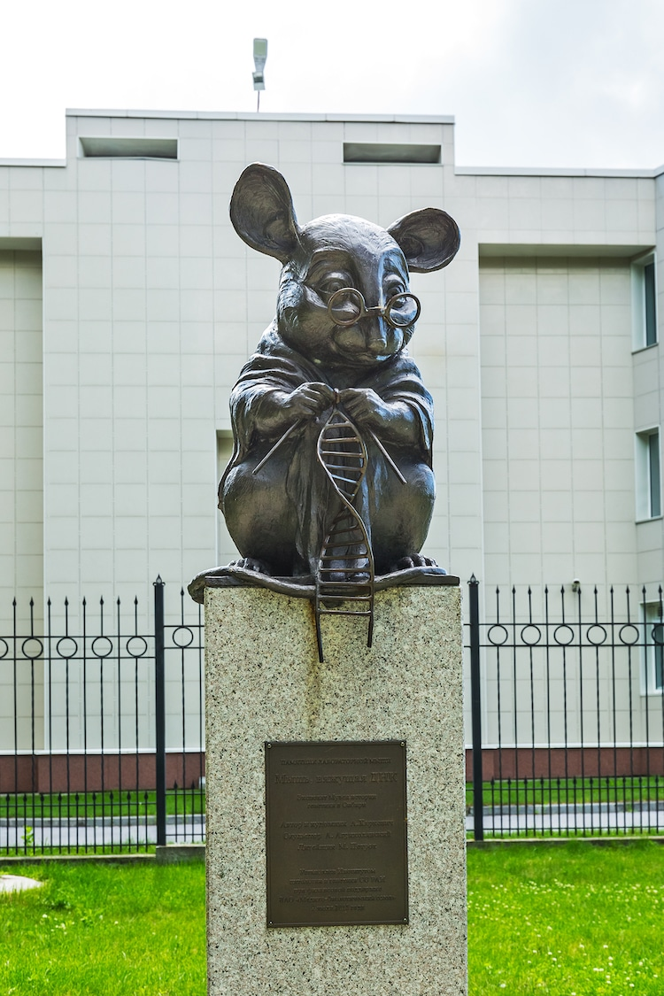 Bronze Mouse Sculpture