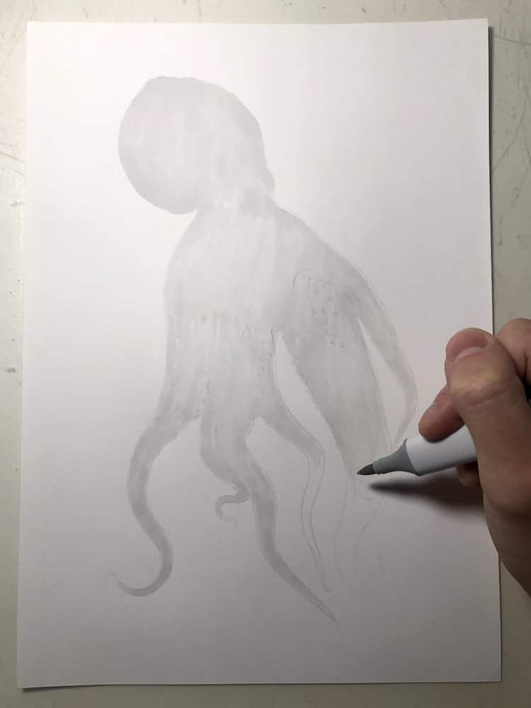 Realistic Octopus Drawing by Yukito Kuda