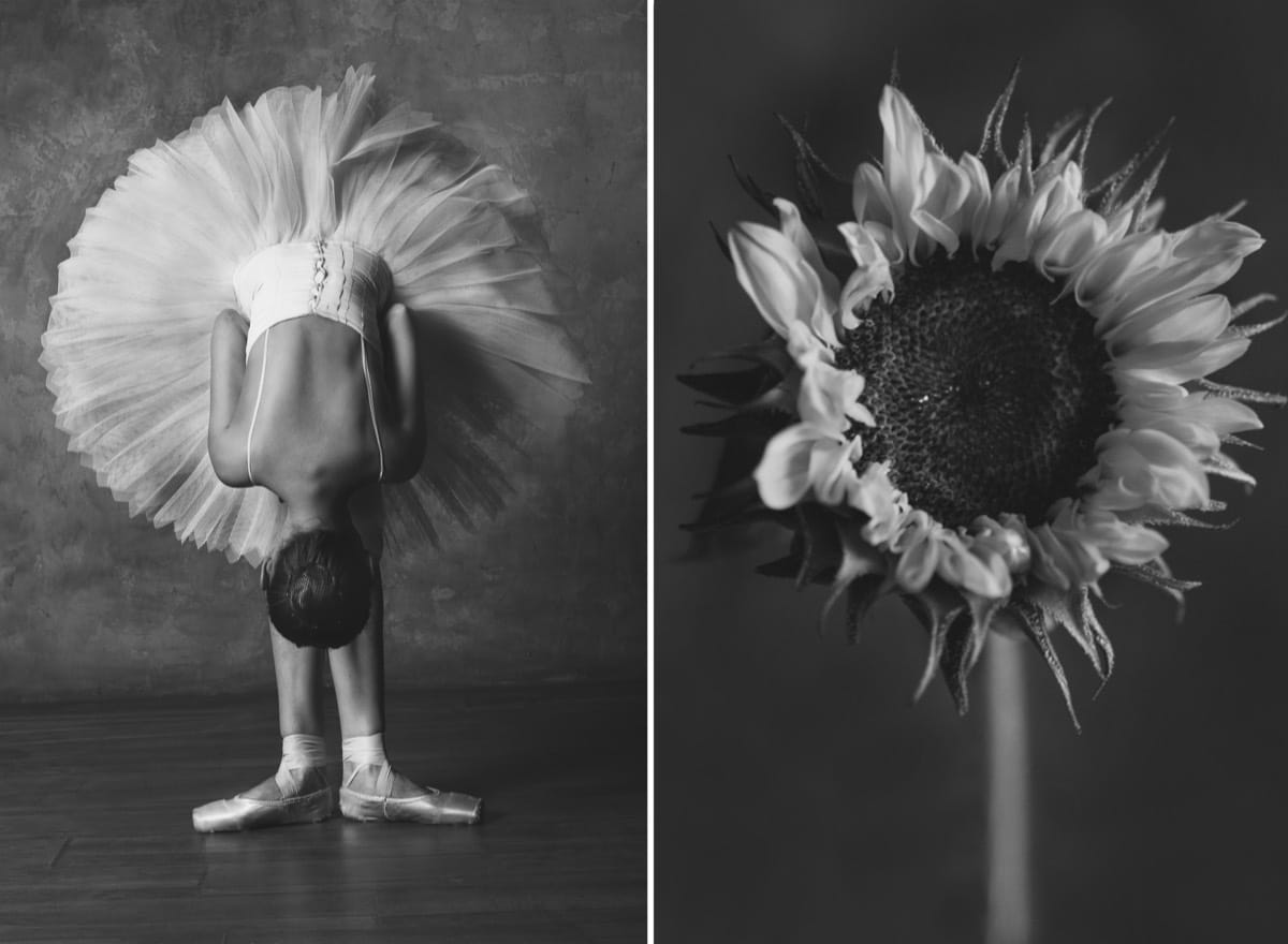 Black and White Photo of a Ballet Dancer Mimicking a Sunflower