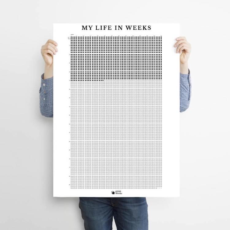 poster de vida en semanas