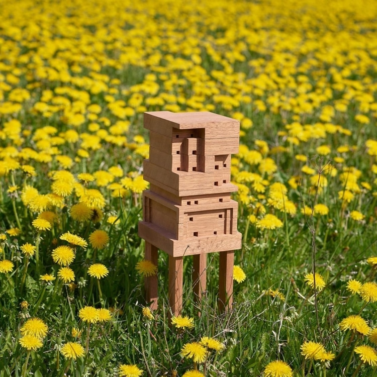 Bee Home in Wildflower Field