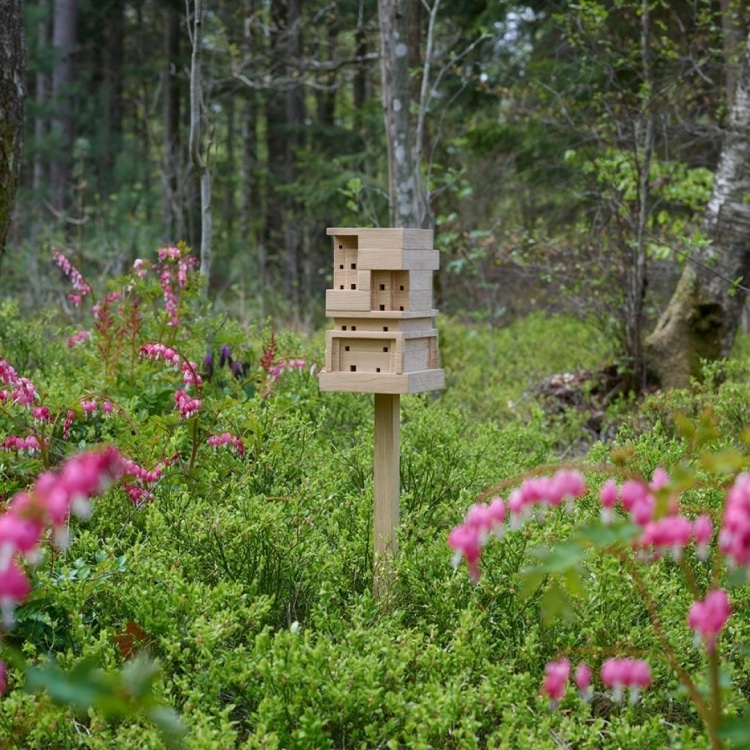 Bee Home in Woods
