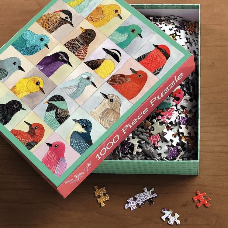 Avian Puzzle