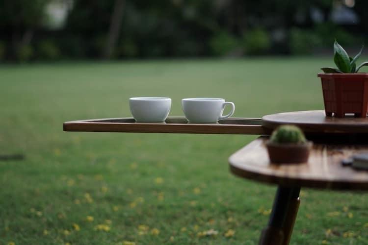 Elytra Coffee Table by Radhika Dhumal