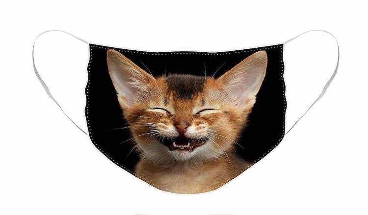 Laughing Cat Face Mask