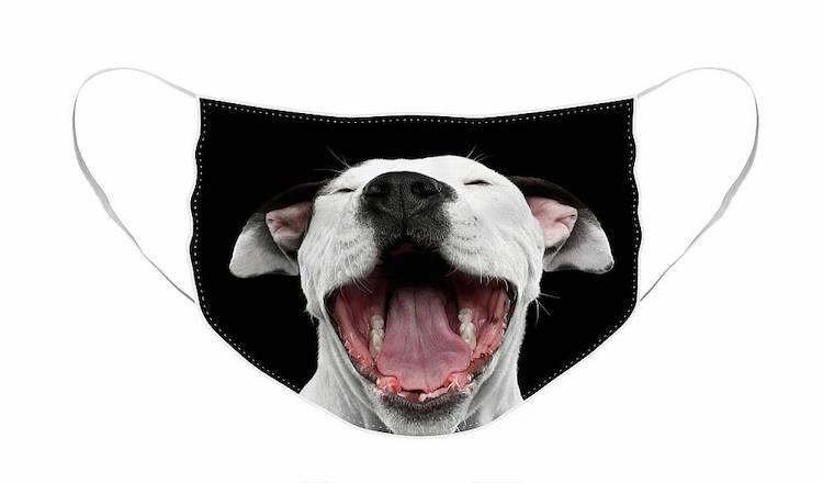 Laughing Dog Face Mask