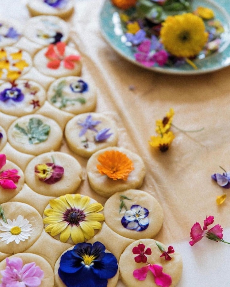 Bánh quy hoa ép