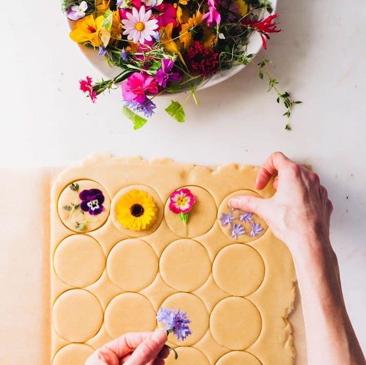 Bánh quy hoa của Loria Stern