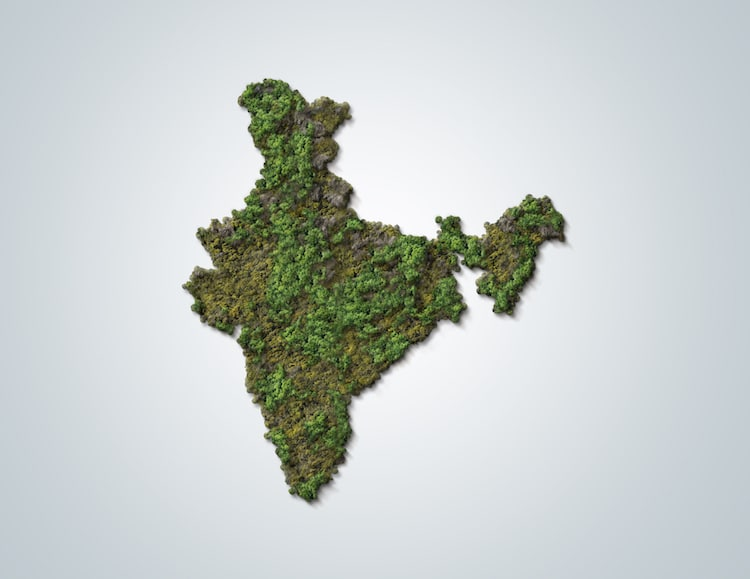 India Covered in Trees