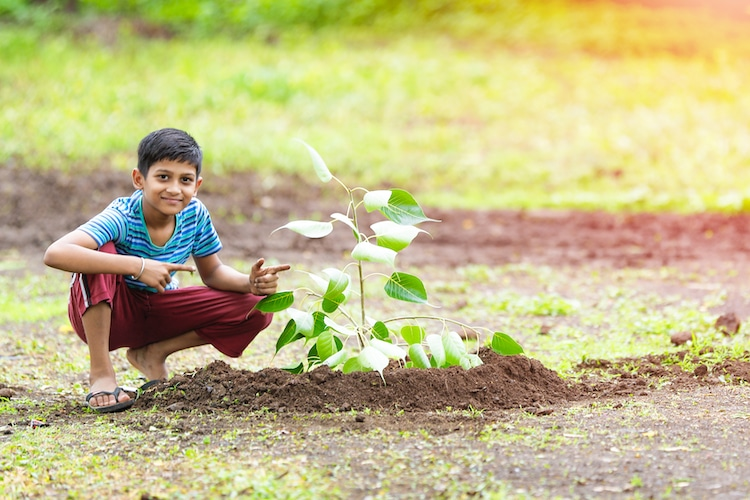 Child with Tree Sapling