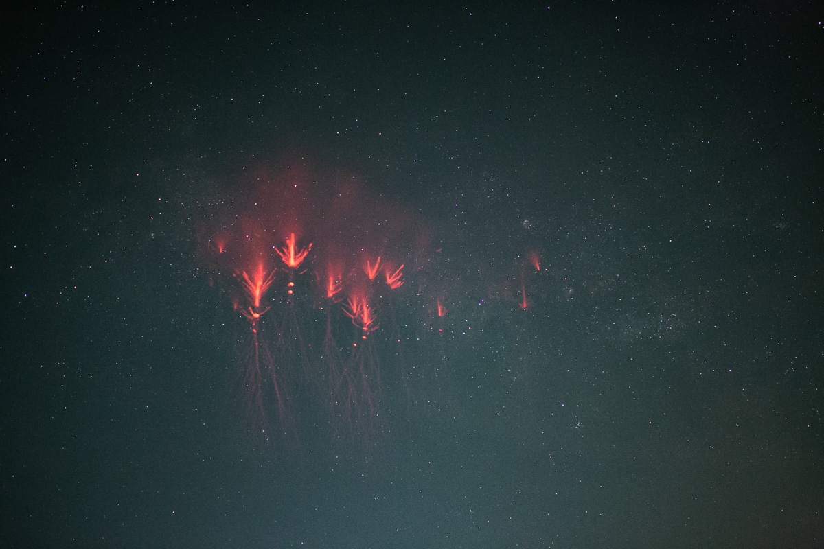 Red Sprite at Night