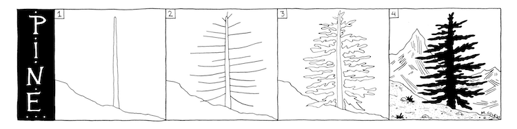 How to Draw Three Types of Trees Drawing Tutorial by Margherita Cole