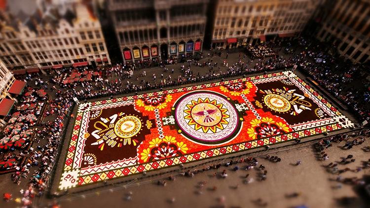 Joerg Daiber Brussels Flower Carpet