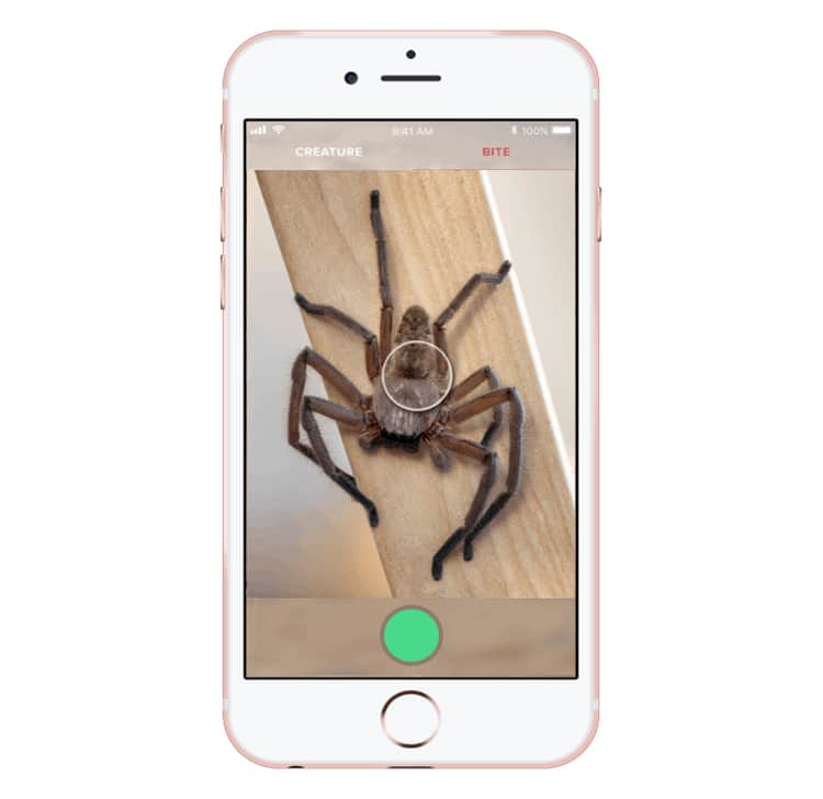 Critterpedia App