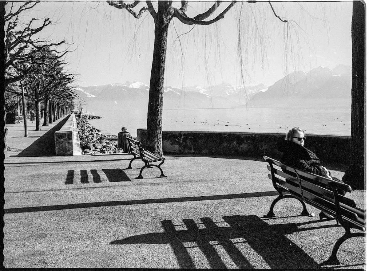 People Sitting on a Bench by the Water