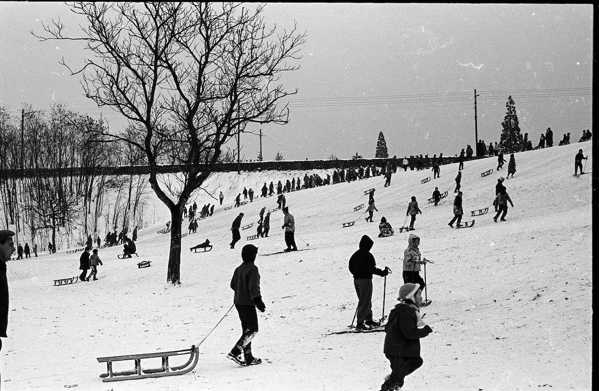People Sledding on a Hill