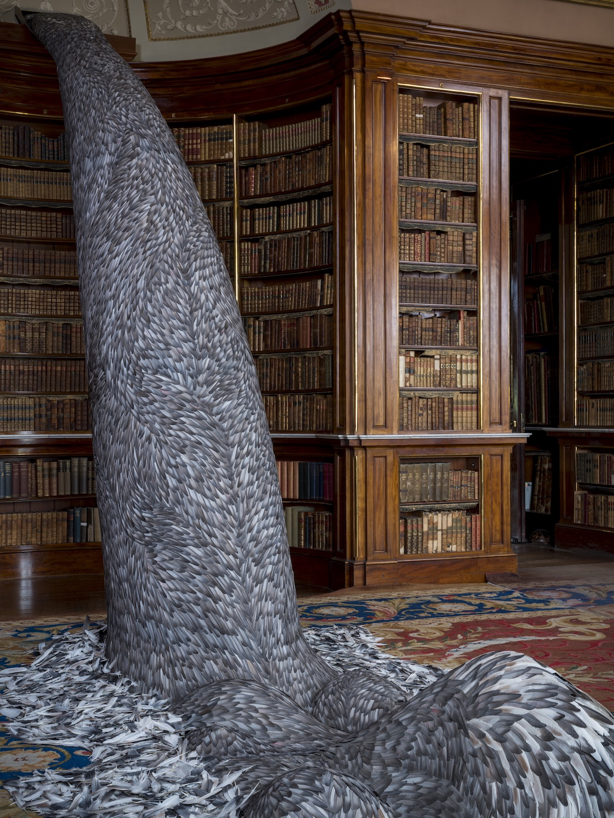Feather Installation by Kate MccGwire