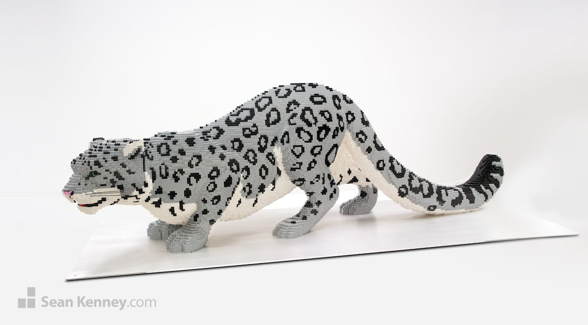 Snow Leopard Sean Kenney