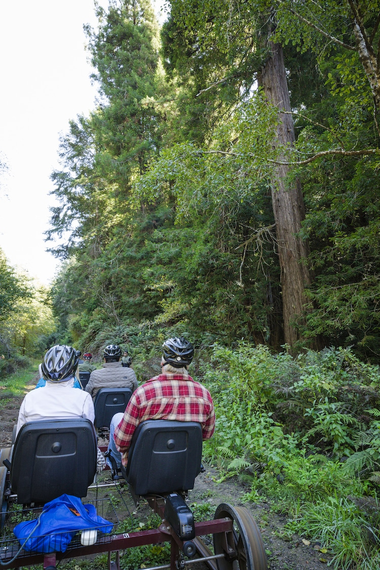 Skunk Train bicis en vias de tren en california