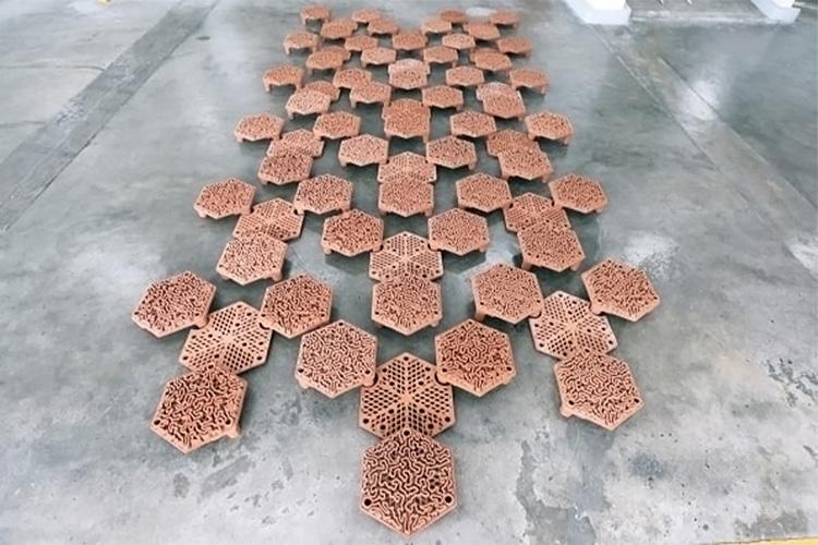 baldosas de terracota en arrecifes de coral