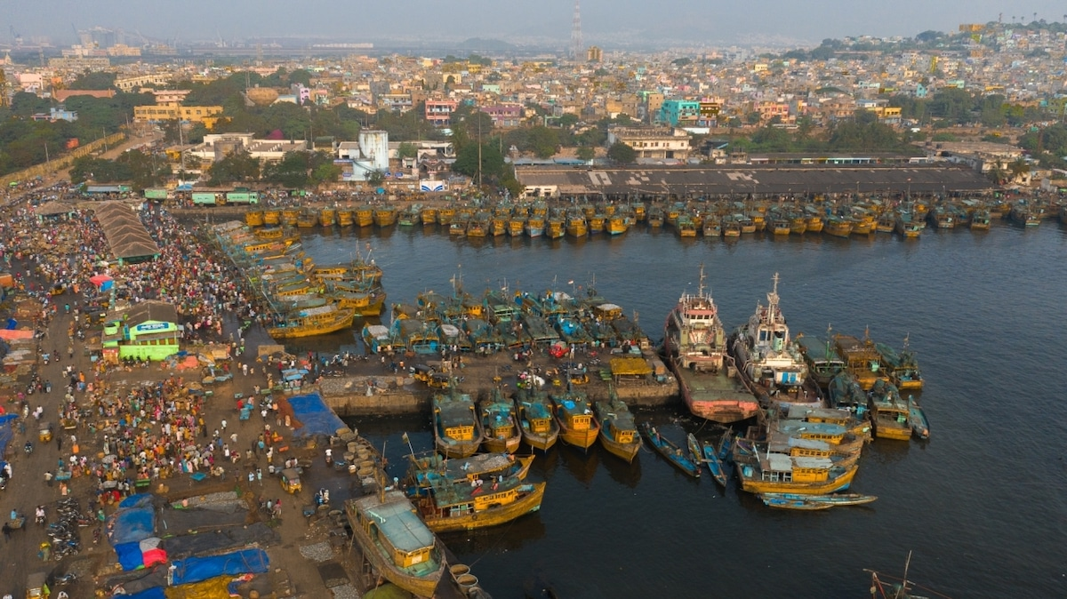 Aerial View of Busy Marine Harbor