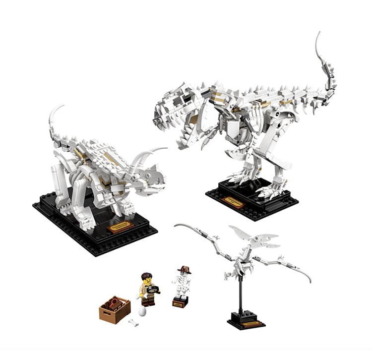 Dinosaur Fossils LEGO Set