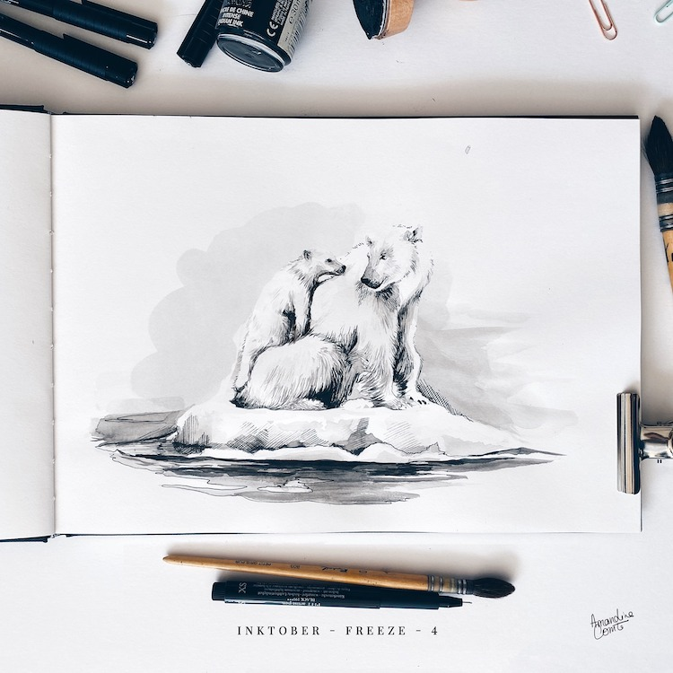Dessin d'ours polaires Inktober