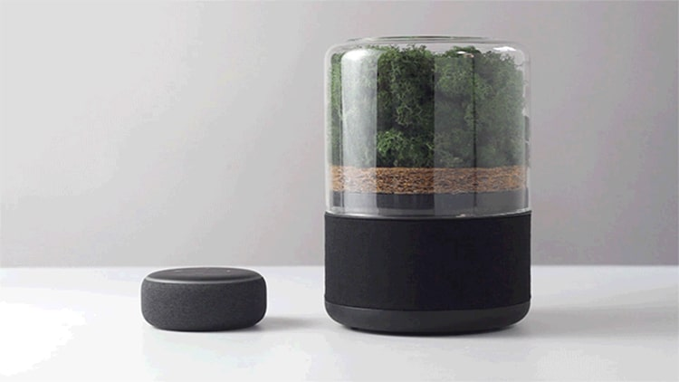 Alexa Google Home Briiv