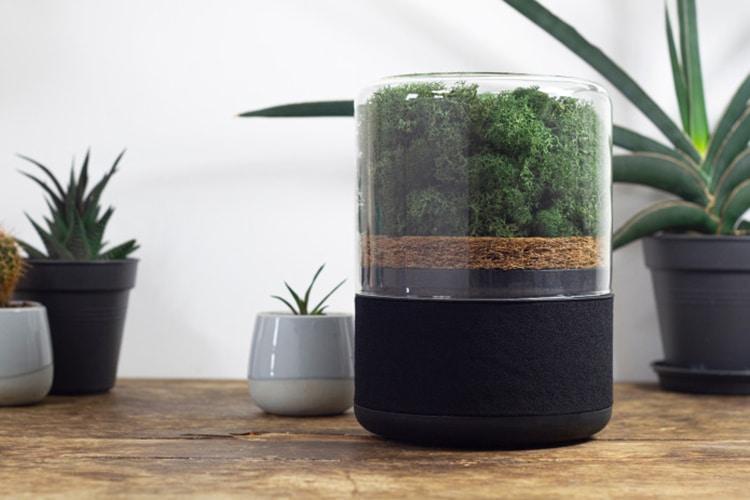 Briiv Power of Plants