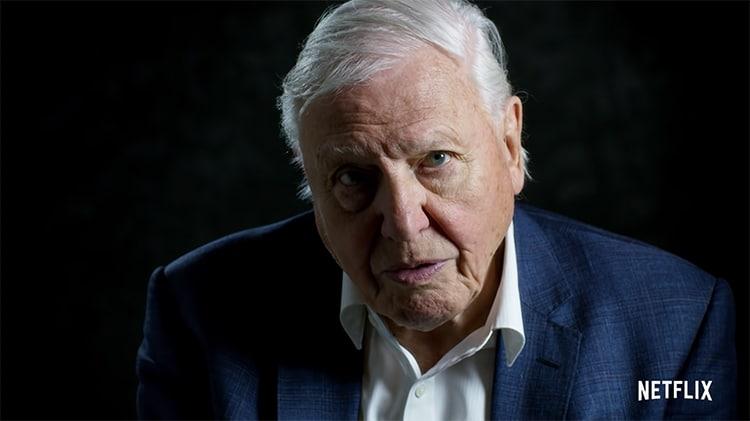 Sir David Attenborough Netflix film